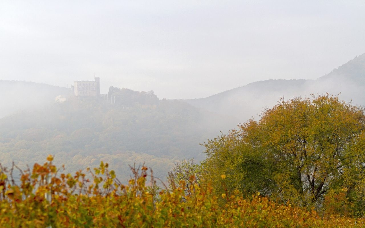 Wetter Net Salzburg